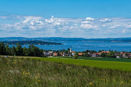 View towards Münsterlingen