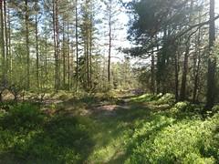 Ned fra Akebakken, Skansehytta, Askim, Indre Østfold, Norway