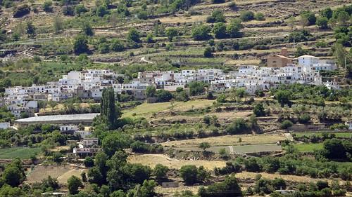Alcútar, Granada_05186