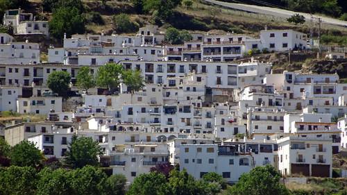 Bérchules, Granada_05187