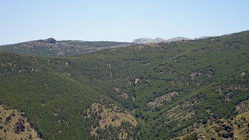 Mirador del Marquesado_05156