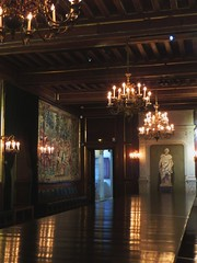 Salle aux cent couverts, château royal de Pau, Béarn, Pyrénées-Atlantiques, Nouvelle-Aquitaine, France.