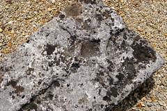 Le Cimetière médiéval de Ligné