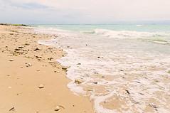 Les rouleaux de bords de l'Océan