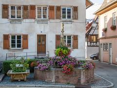 Fontaine de l'ours (Stockbrunnen) de Dambach-la-Ville - Photo of Hilsenheim