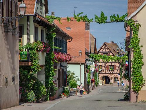 Route du vin à Itterswiller