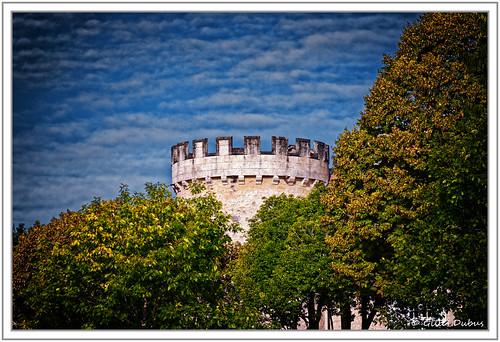 La tour presque cachée par les arbres