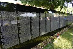 Veterans Being Honored