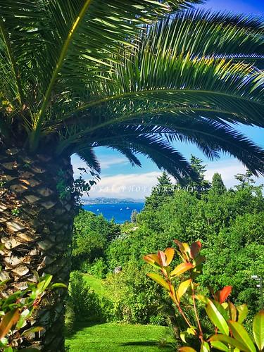 Golfe de Saint-Tropez depuis l'hôtel Villa Belrose -IMG_20190603_170925