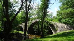 pont du diable - Photo of Saint-Jean-Soleymieux