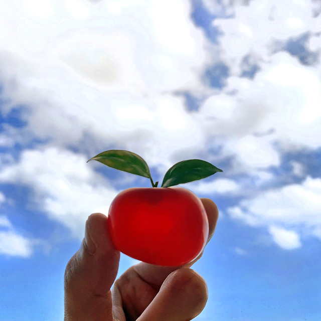 An Apple a Day, Keep The Doctors at Bay