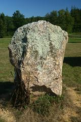 Le « Menhir des Taillis » près de la Gacilly - Morbihan - Septembre 2018 - 05
