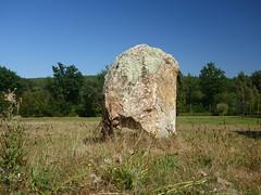 Le « Menhir des Taillis » près de la Gacilly - Morbihan - Septembre 2018 - 09