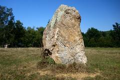 Le « Menhir des Taillis » près de la Gacilly - Morbihan - Septembre 2018 - 08