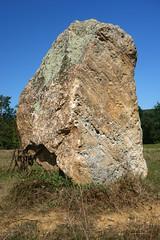 Le « Menhir des Taillis » près de la Gacilly - Morbihan - Septembre 2018 - 07