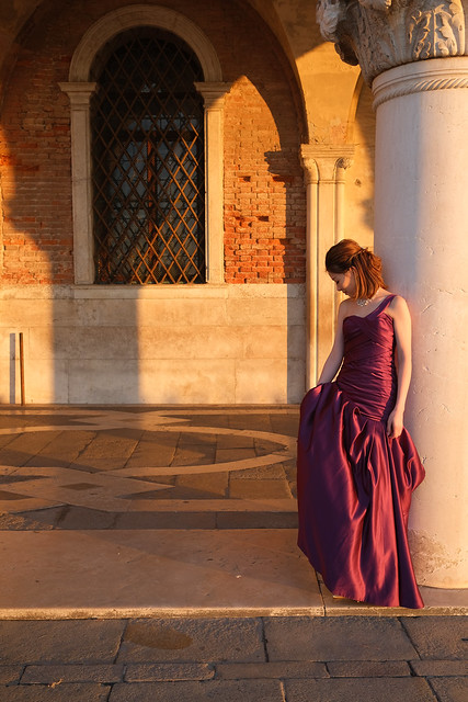 Venice Model