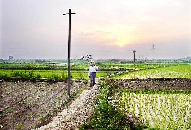 Quatro pontos da reforma da Previdência que vão prejudicar o trabalhador rural