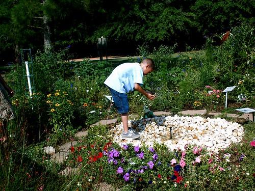 Flower Garden Marcus Jr