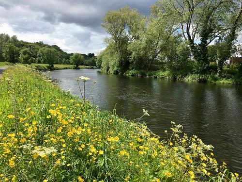River Liffey Near Islandbridge