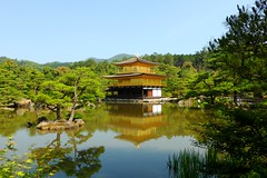 Kinkaku-ji, Shari-den (Golden Pavilion) -2 (June 2019)