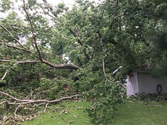 Cottonwood Falls on Home / Shed, South Tulsa
