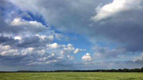 Westerwolde landscape