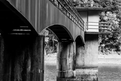 Whau Valley Dam16
