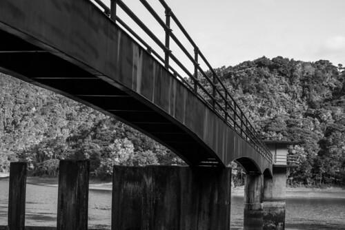 Whau Valley Dam24
