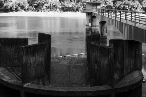 Whau Valley Dam03
