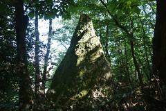 Le menhir de la « Roche-Piquée » près de la Gacilly - Morbihan - Septembre 2018 - 06