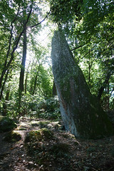 Le menhir de la « Roche-Piquée » près de la Gacilly - Morbihan - Septembre 2018 - 03
