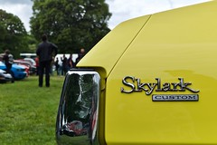 Skylark custom - Photo of Seraincourt