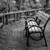 Photo:Inokashira Park 02 By haribote