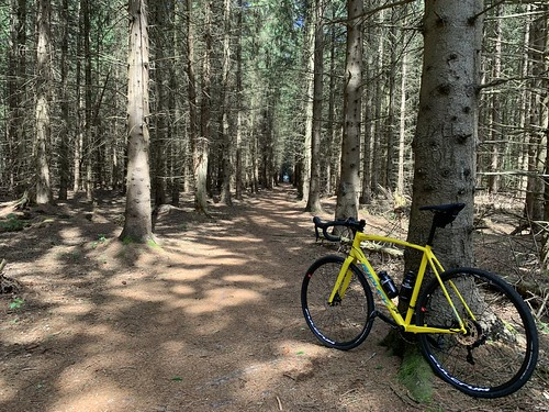 Finally a real (90km) ride on the new Ridley X-Trail, mixing asphalt with gravel and forest roads, grip is great, only the derailleur needs some fine-tuning.