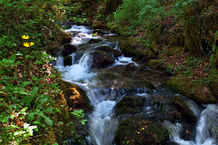 L'eau, la vie... The water, the life... #Gimp #DigiKam #FujiX-S1