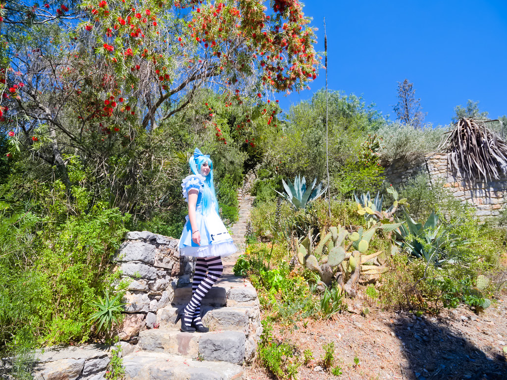 related image - Shooting Vocaloid Alice in Wonderland- Parc Saint Bernard - Hyères -2019-05-30- P1677499