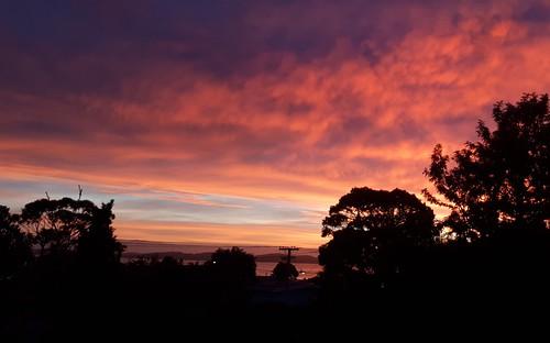 Winter Sunrise, Pohutukawa Coast,  New Zealand