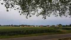 Montchanin - Dole - Photo of Navilly