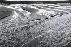 Black Sand at Piha Beach