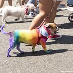 LA Pride Parade in Weho 2019 030 copy