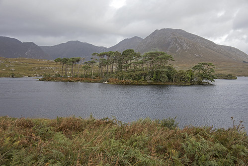 Lake in Connemara
