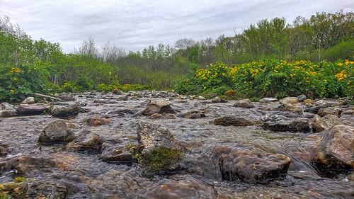Bluff Creek State Natural Area