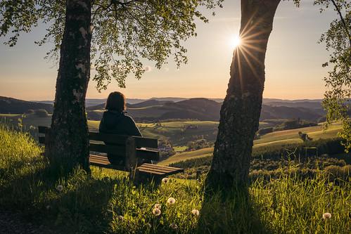 Enjoying a spring evening