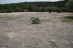 Limestone pavement near Le Pont du Gard - UNESCO World Heritage site, one of Les Grands Sites de France
