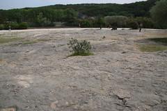 Limestone pavement near Le Pont du Gard - UNESCO World Heritage site, one of Les Grands Sites de France