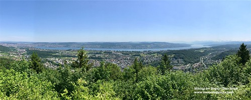 0502 Zürich - Rifferswil