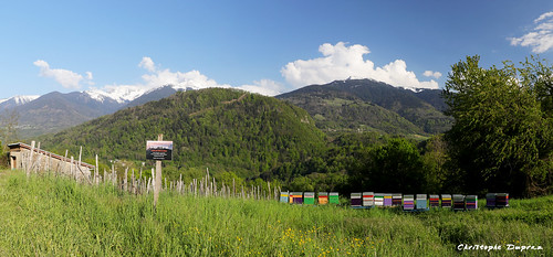 01052019 EOS 6D Mark II-012a Panorama Ruches1