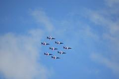 Pour les 50 ans d'Airbus, la patrouille de France transpercent les nuages à Merville.