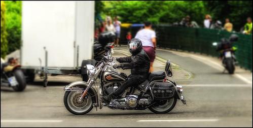 - Low - Rider -
