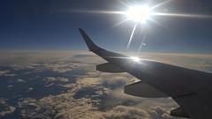 Sun on wing